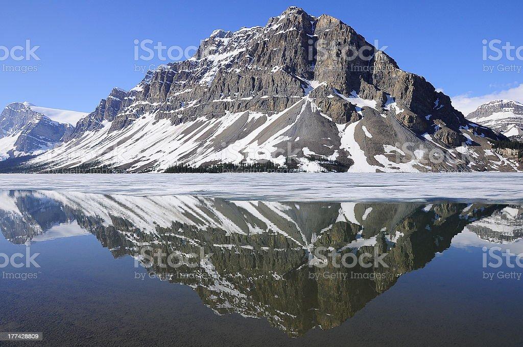 Bow lake. Banff National park. Canada. stock photo