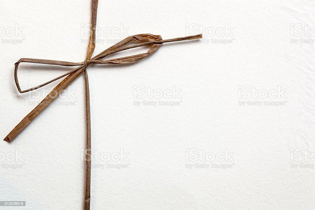 Bow on White Paper stock photo
