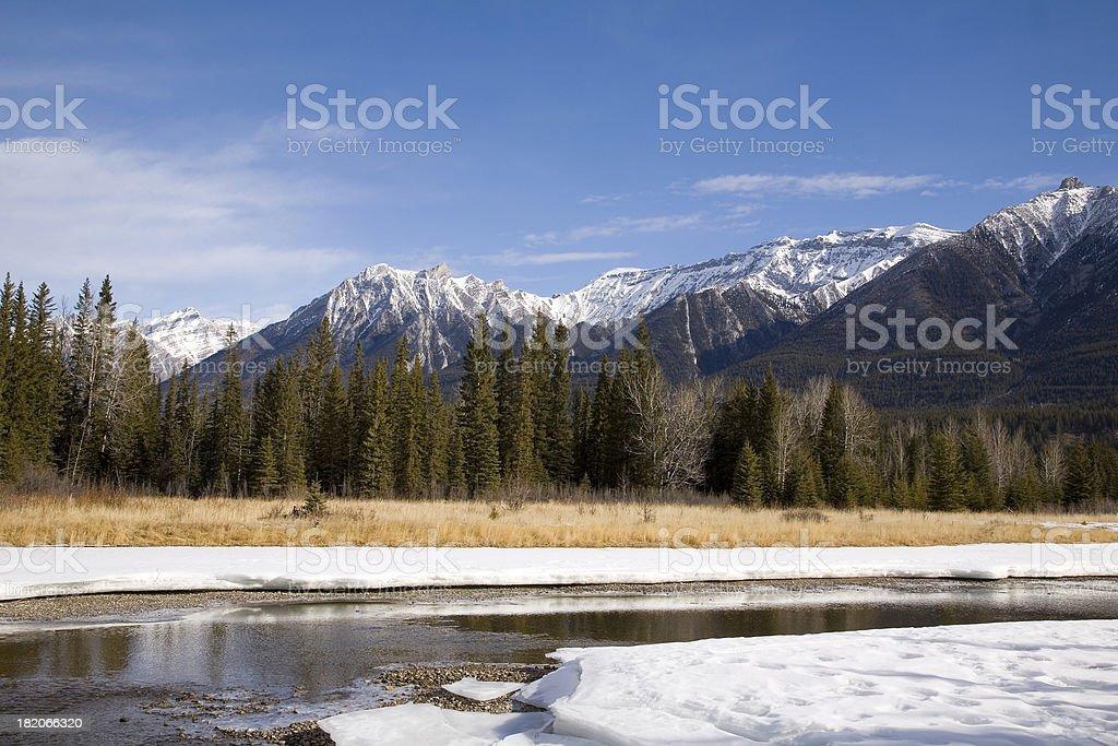 Bow River royalty-free stock photo
