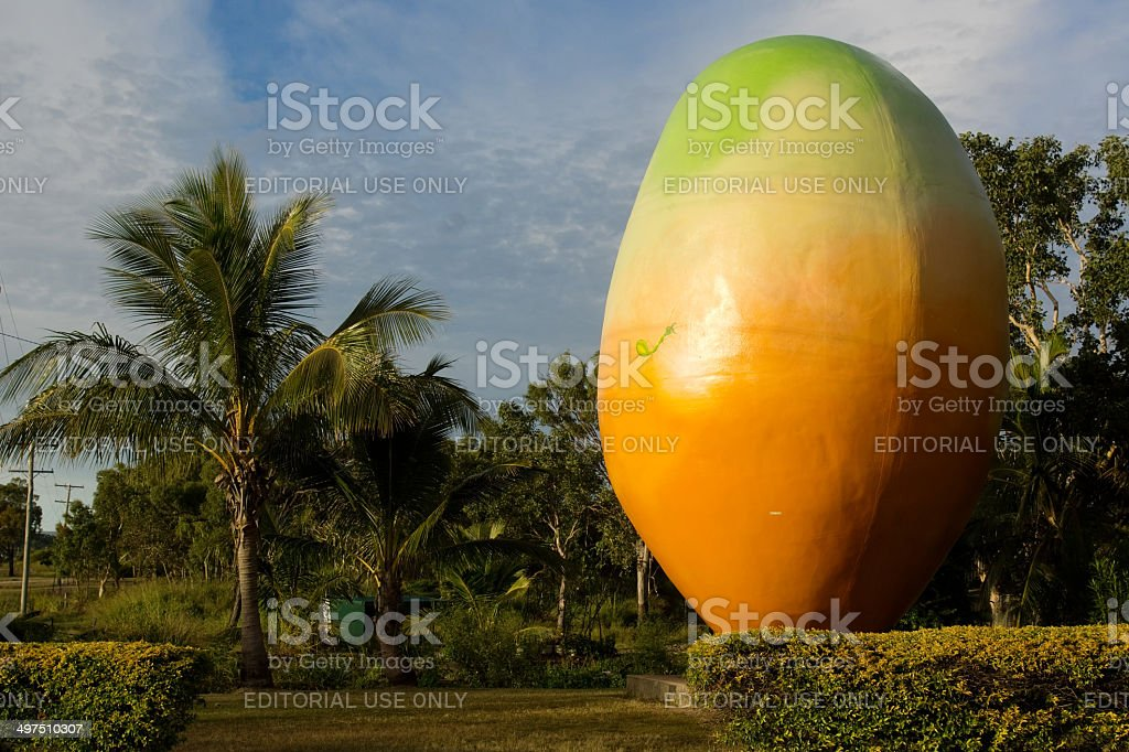 Bowen's Big Mango stock photo