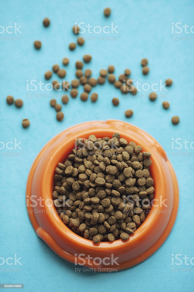 bowl full of cat or dog food stock photo