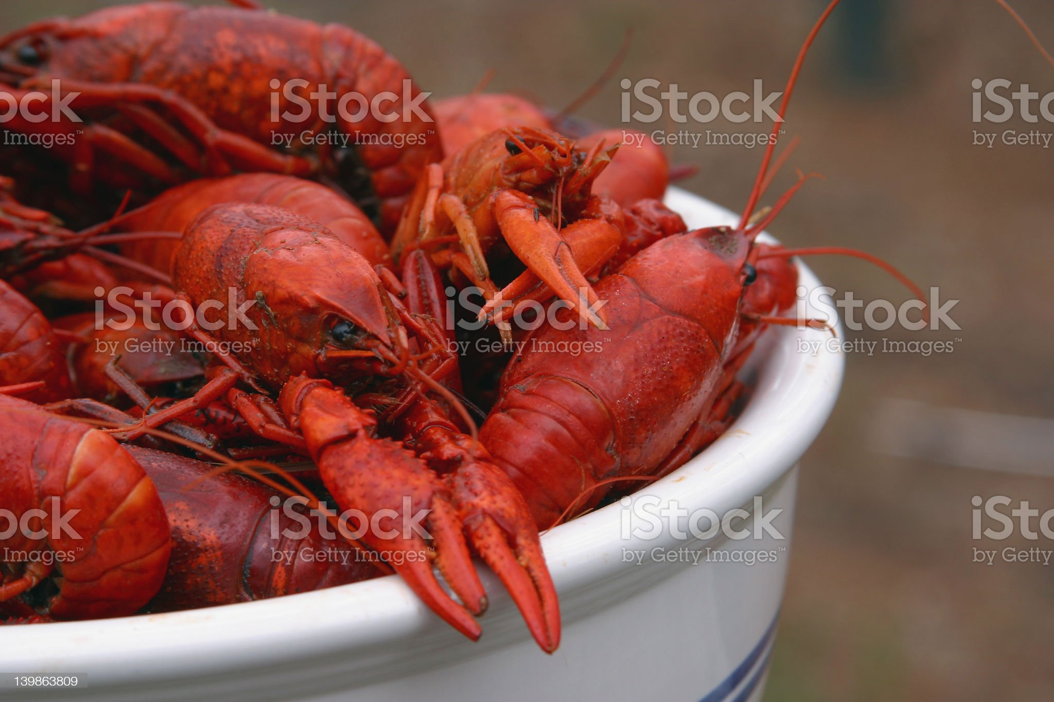 Bowl of Boiled Crawfish royalty-free stock photo