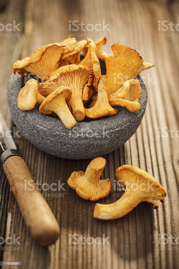 Bowl of chanterelles on а wooden table stock photo