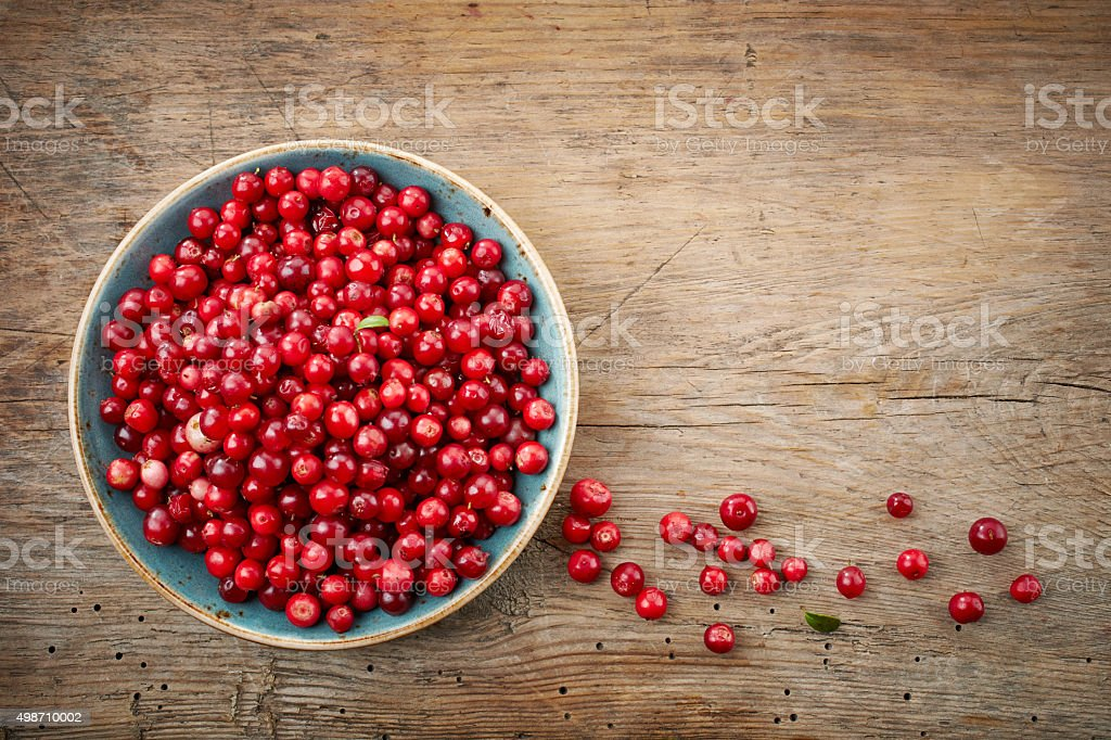 bowl of cowberries stock photo