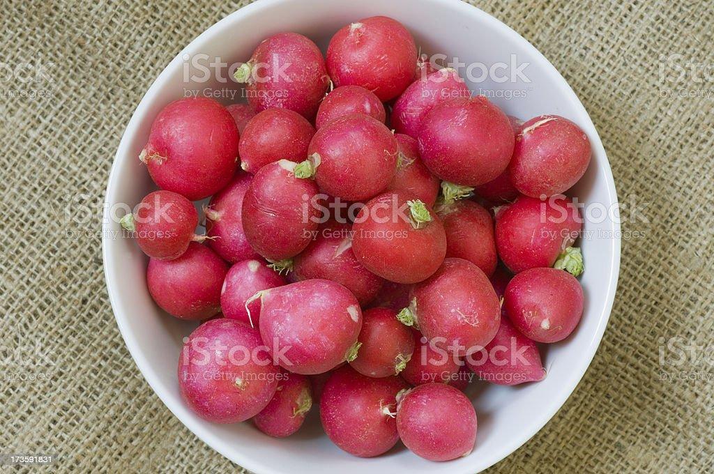 Bowl of fresh radishes royalty-free stock photo