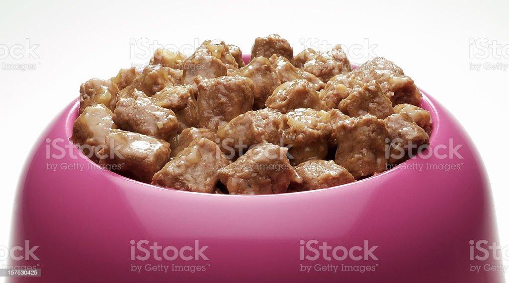 Bowl of pet food stock photo