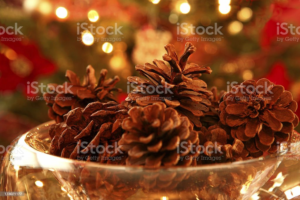 Bowl of Pine Cones royalty-free stock photo
