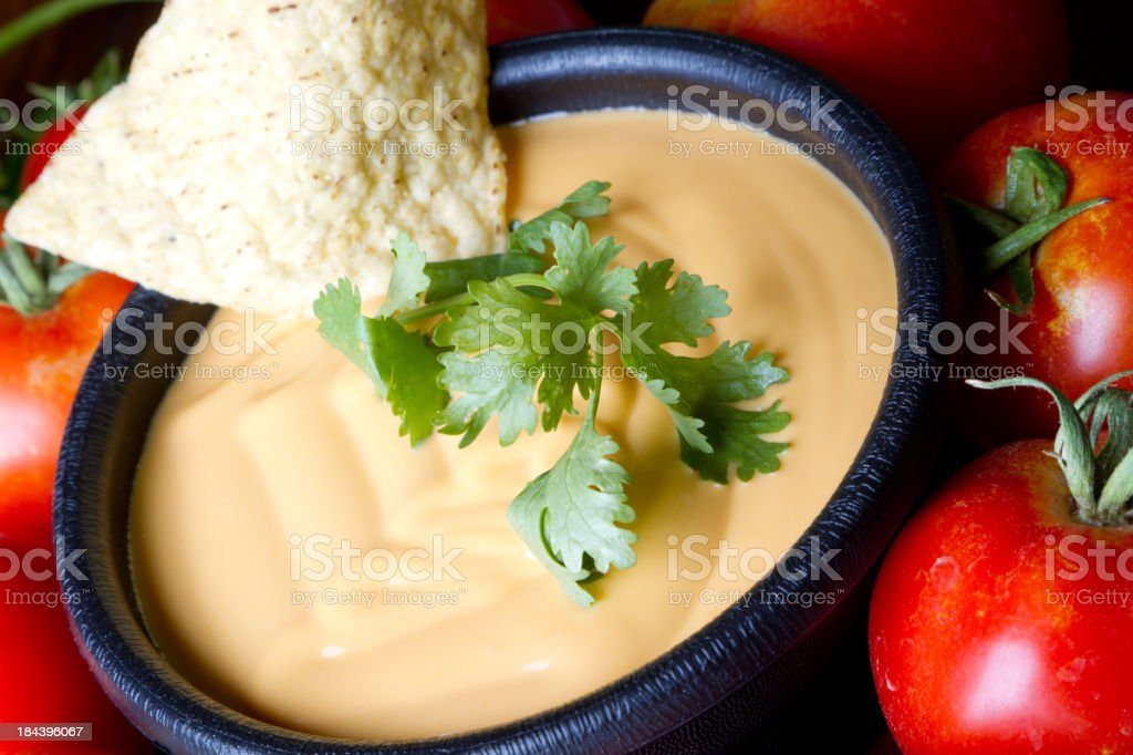 A bowl of queso dip surrounded by ripe tomatoes stock photo