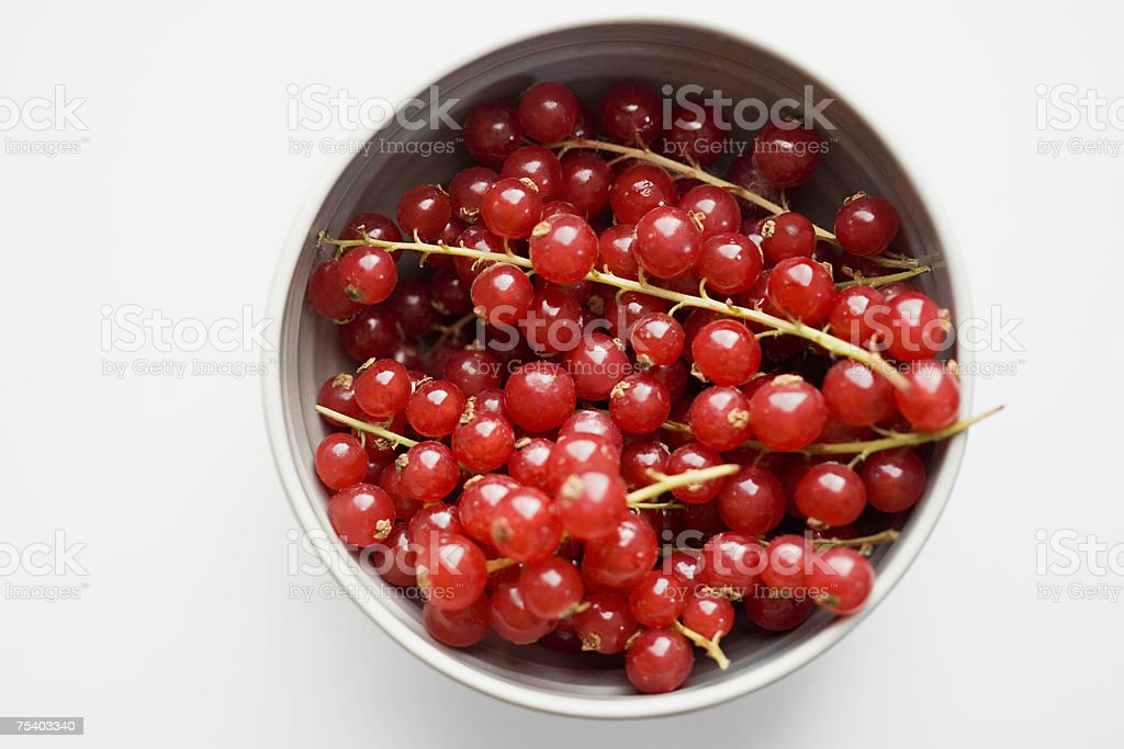Bowl of redcurrants stock photo