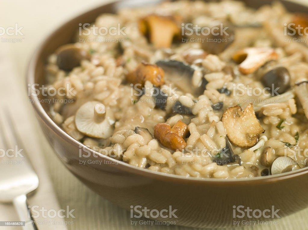 Bowl of Wild Mushroom Risotto royalty-free stock photo