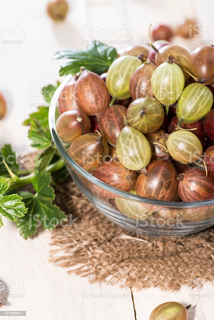 Bowl with fresh Gooseberries royalty-free stock photo