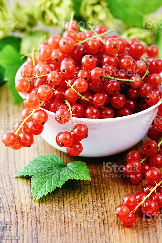 bowl with red currants on a table stock photo