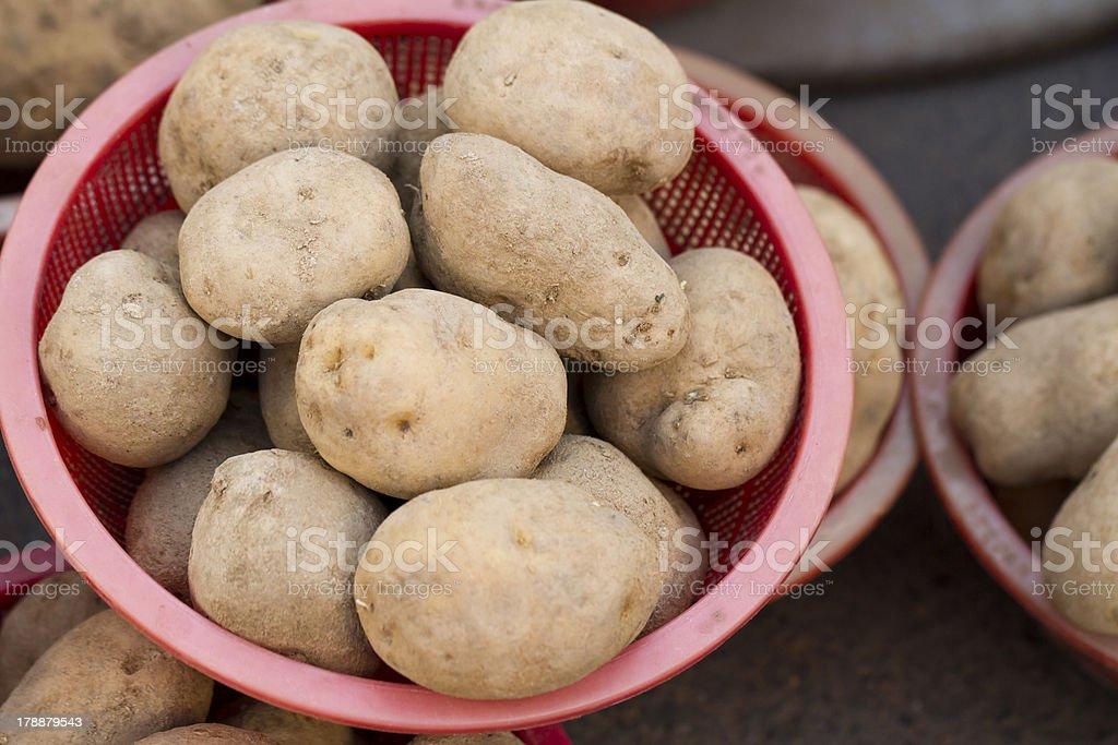 Bowls of Potatoes royalty-free stock photo