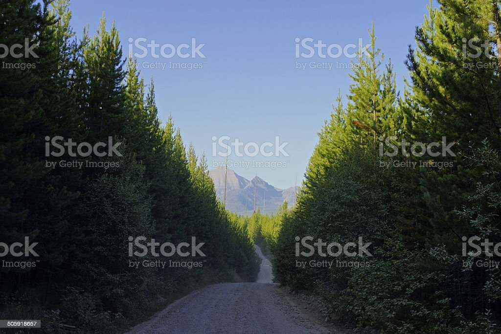 Bowman Lake Road stock photo