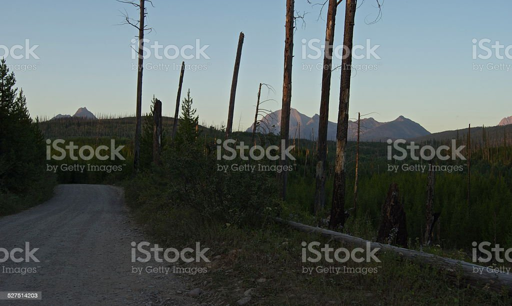 Bowman Lake Road Sunset stock photo