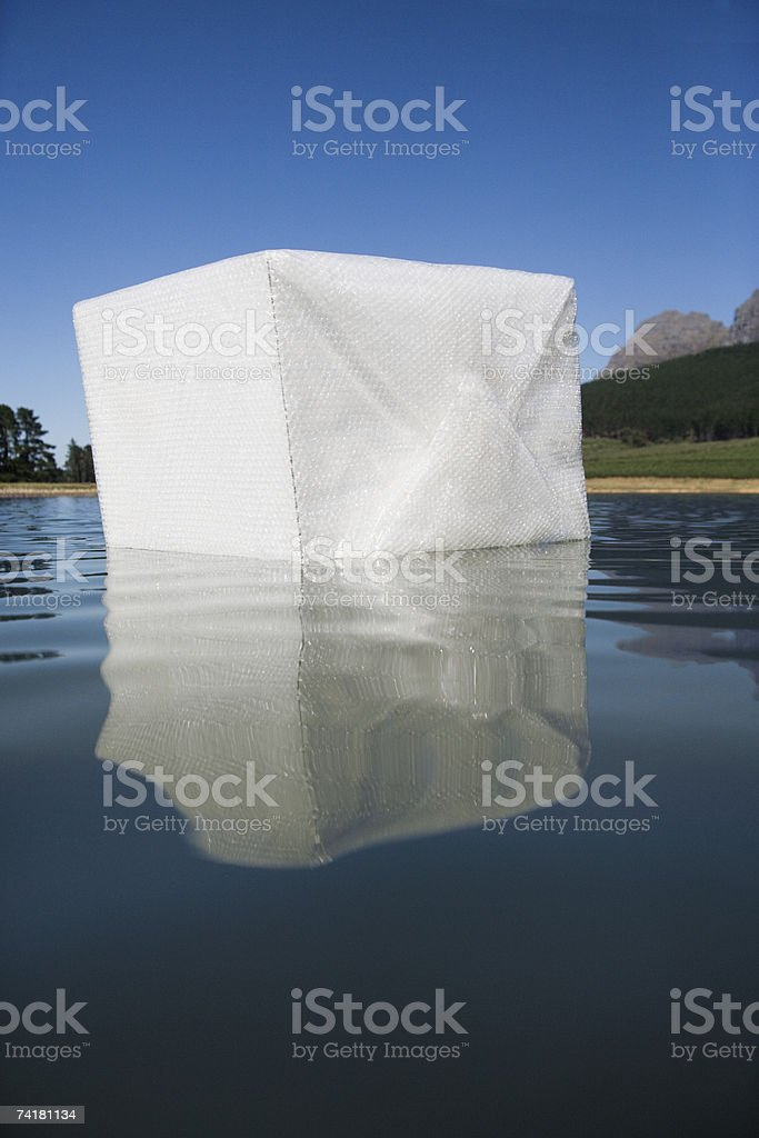 Box floating in water with trees royalty-free stock photo