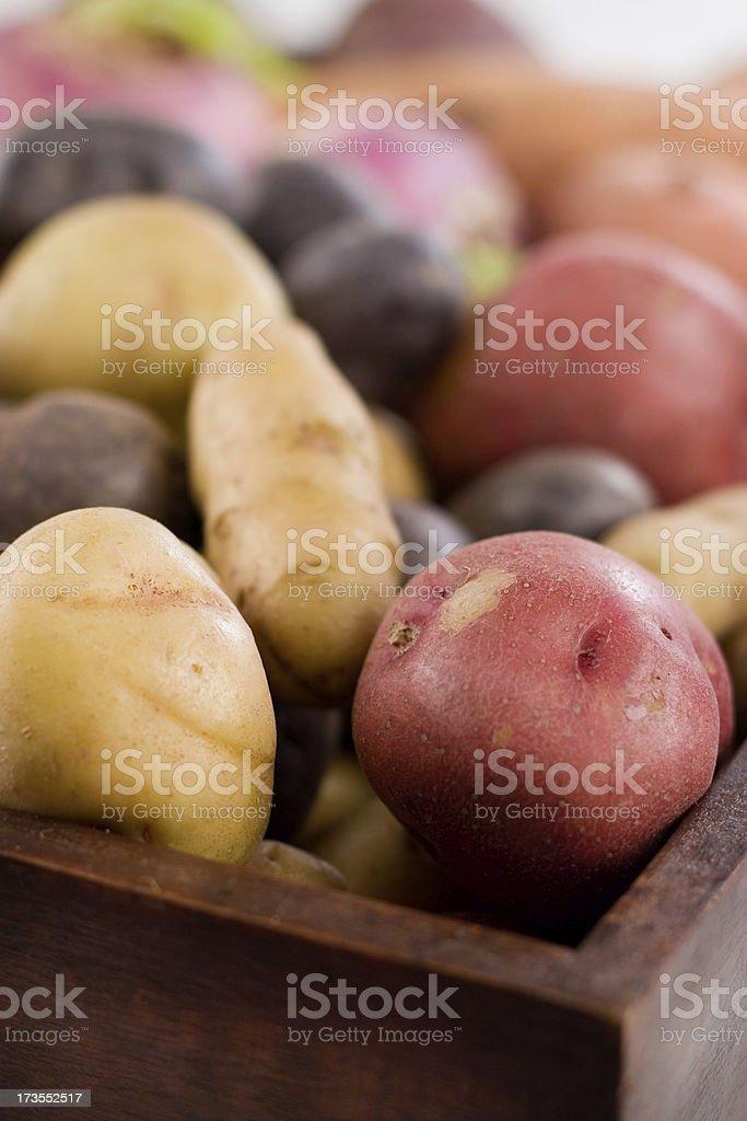 Box of Potatoes royalty-free stock photo