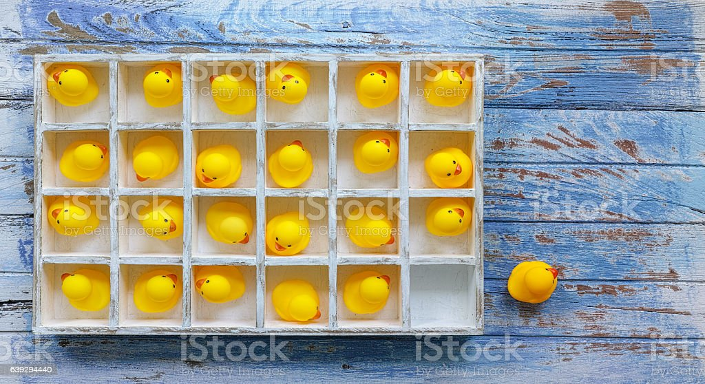 Box of yellow rubber ducks with one outside the box. stock photo