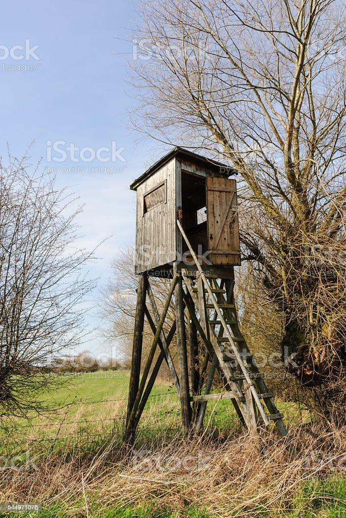 Box stand in a hedge stock photo