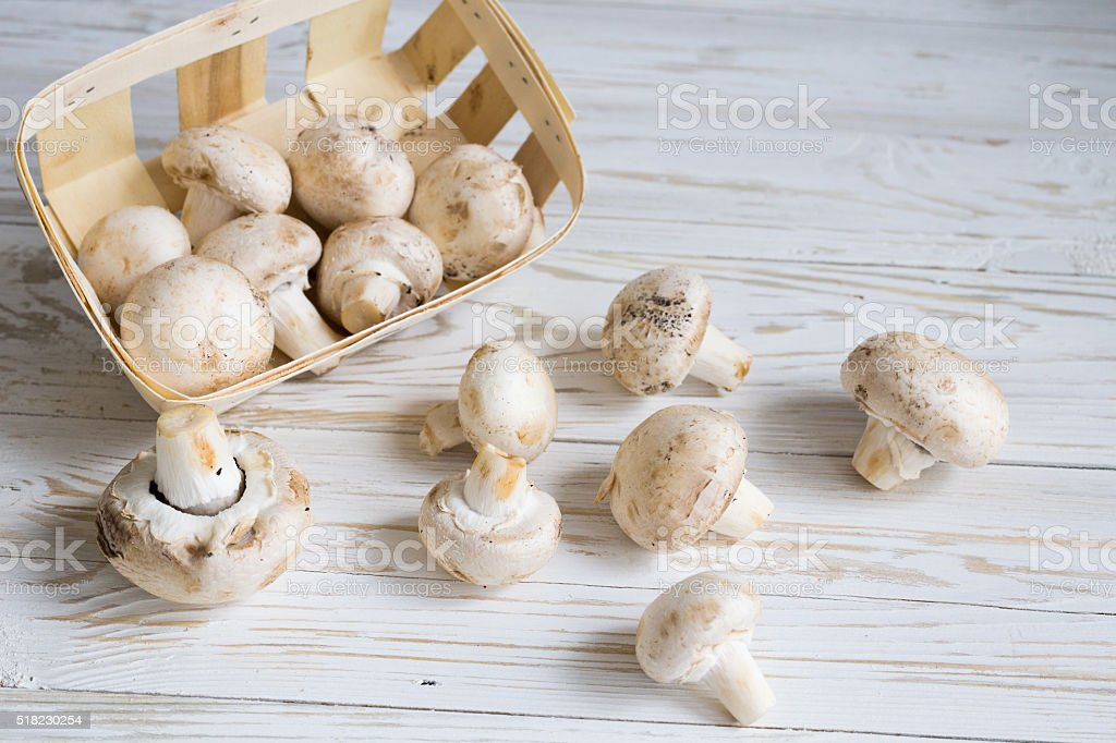 Box with champignon stock photo