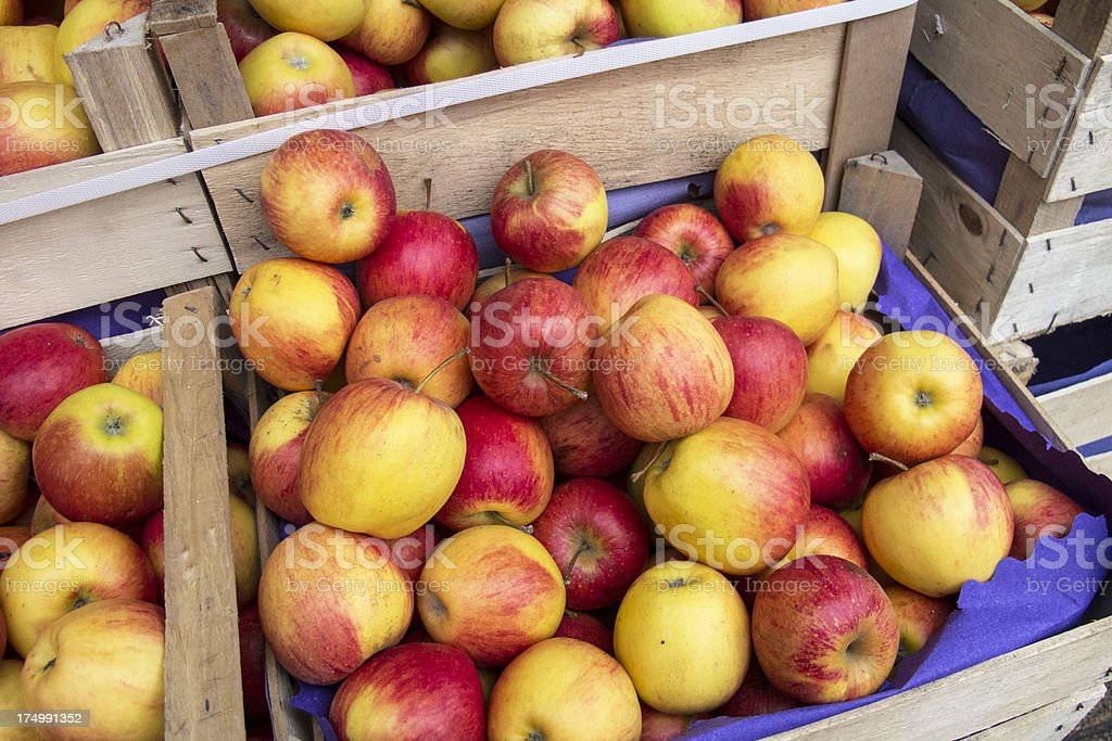 box with red and yellow apples royalty-free stock photo
