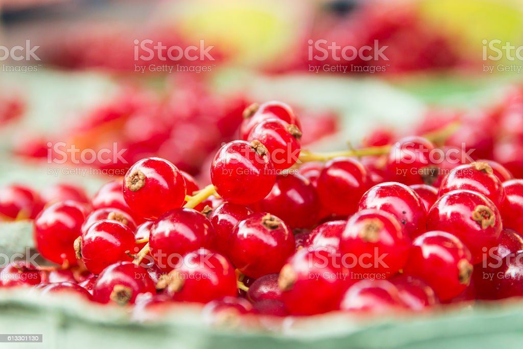 Box with red berries. (Ribes rubrum) stock photo