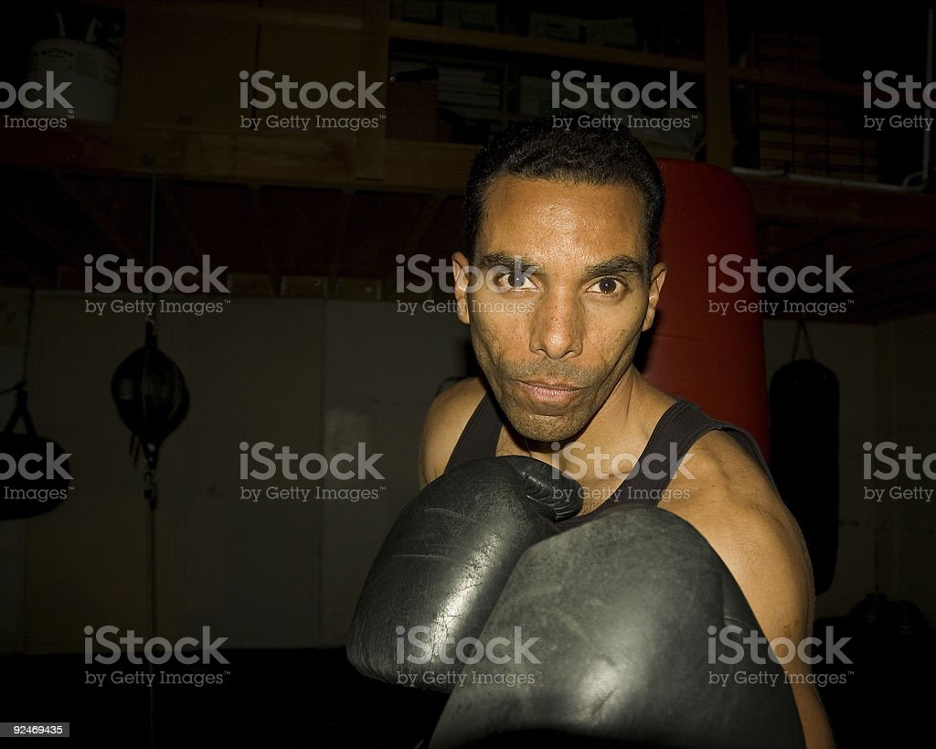 Boxer - 5 royalty-free stock photo