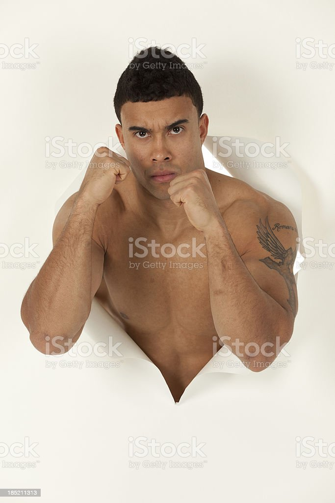 Boxer emerging from a hole of paper royalty-free stock photo