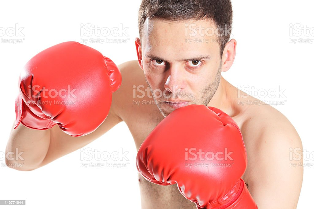 Boxer in action royalty-free stock photo