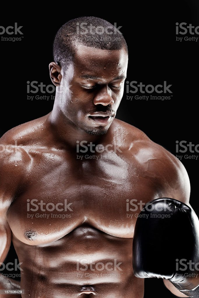 Boxer looking down royalty-free stock photo