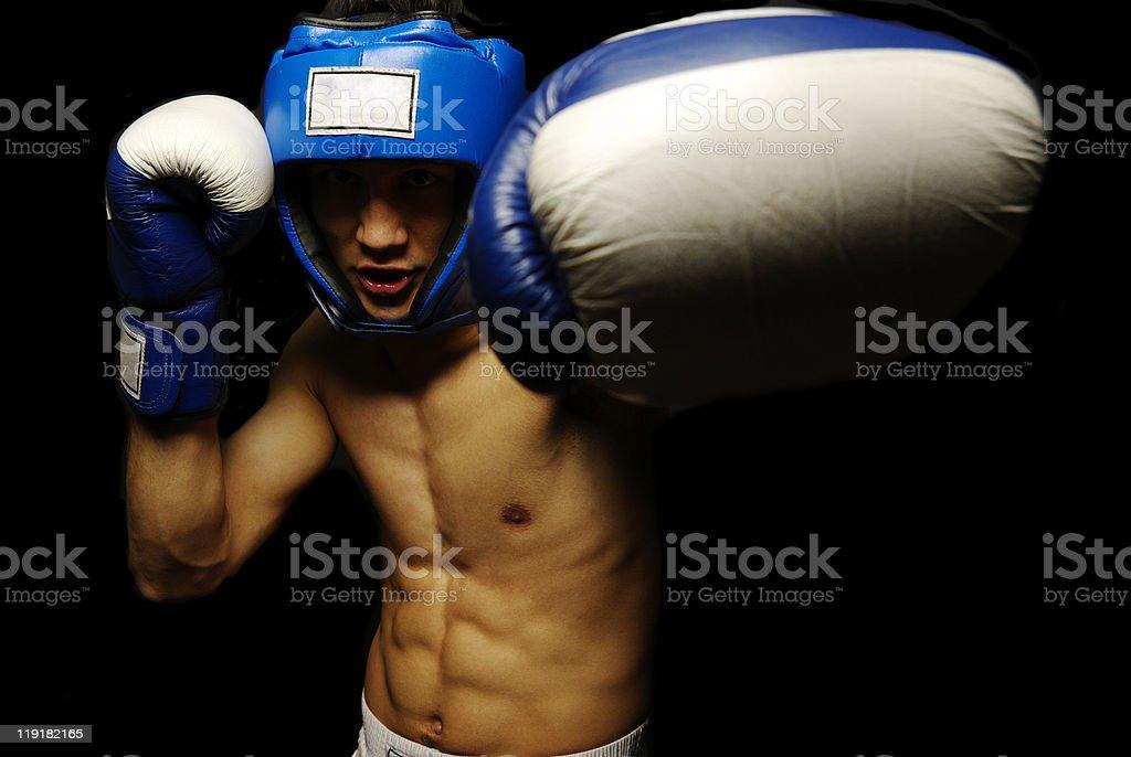 Boxer man stock photo