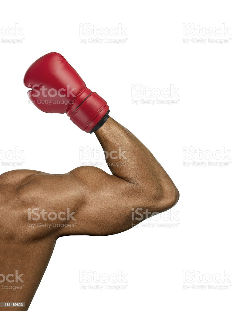 Boxer muscular royalty-free stock photo