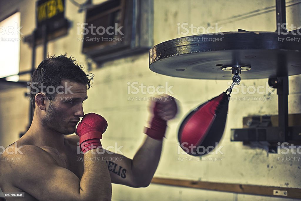 boxer on the speed bag stock photo