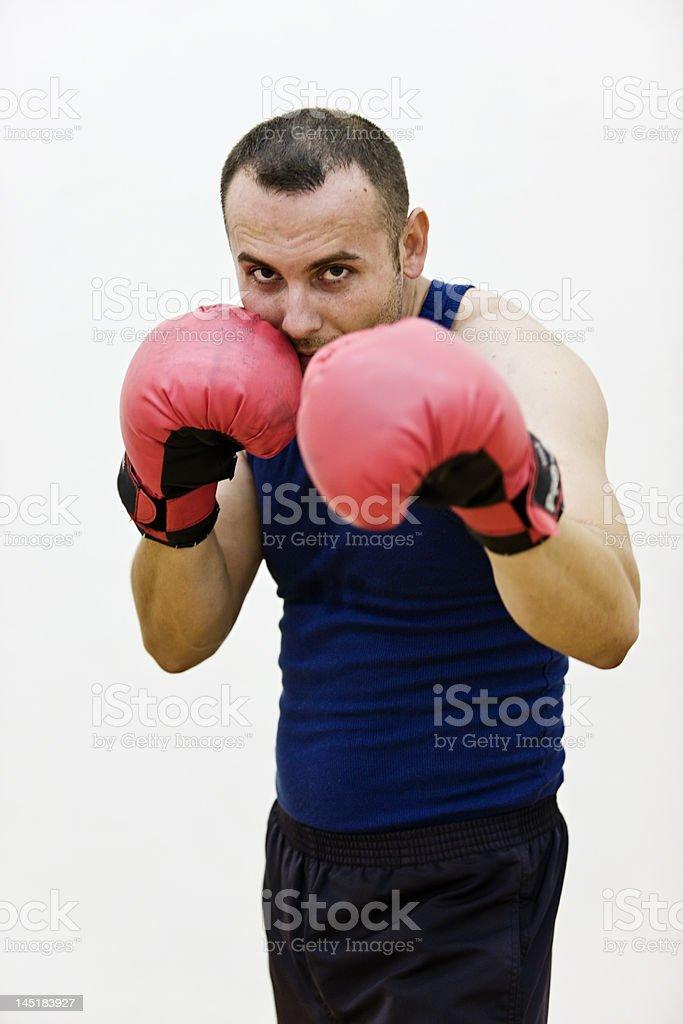 Boxer royalty-free stock photo
