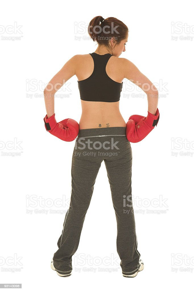 Boxer #18 royalty-free stock photo