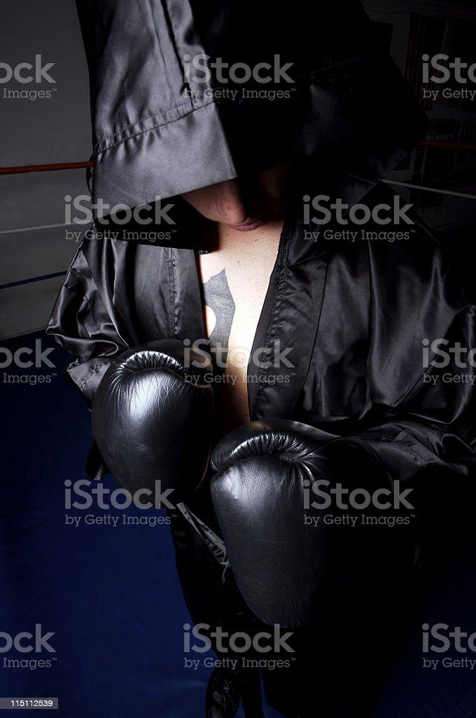 boxer portrait royalty-free stock photo