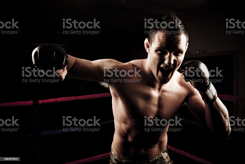Boxer Punching Towards the Camera royalty-free stock photo