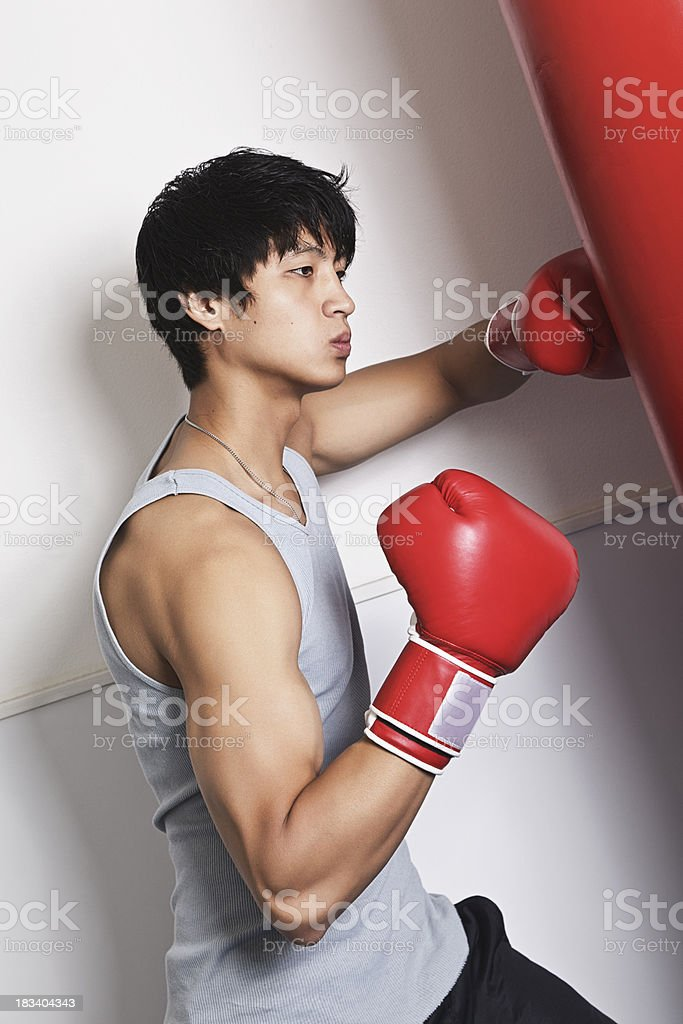 Boxer Training in a Gym stock photo