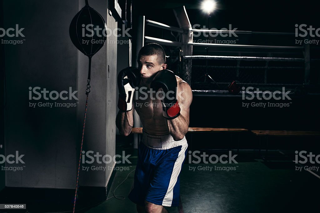 Boxer training with a punching speed bag stock photo