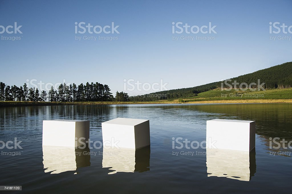 Boxes floating in water with trees royalty-free stock photo