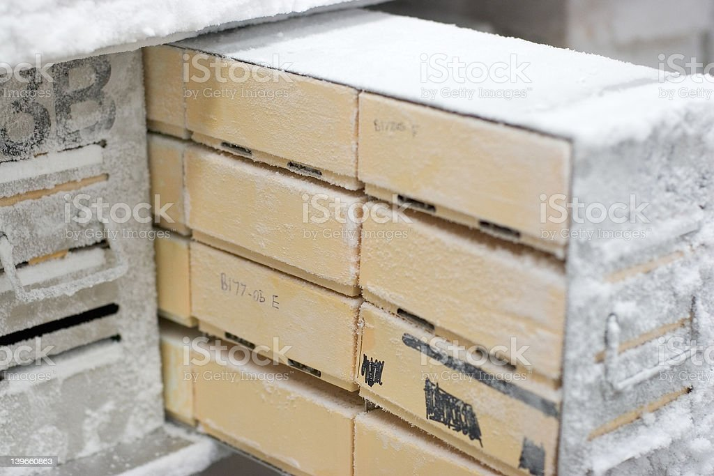 Boxes in Freezer 2 stock photo