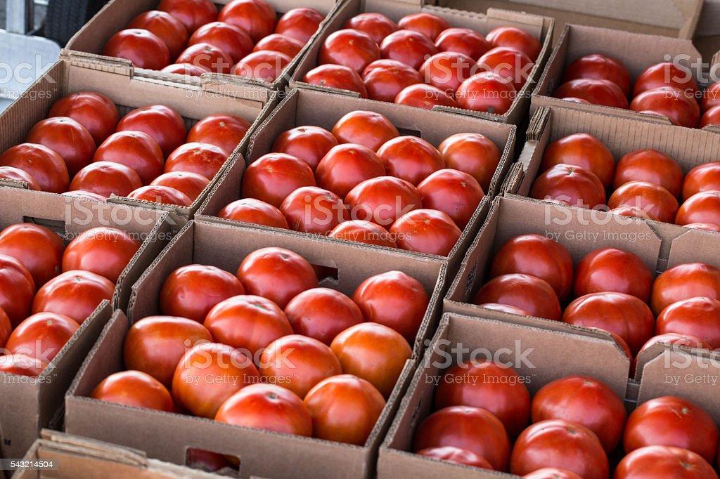 Boxes of Ripe Tomatos at Farmers Market stock photo