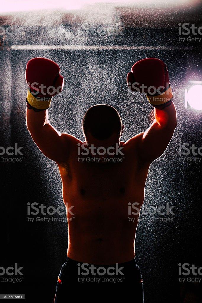 Boxing champion stock photo