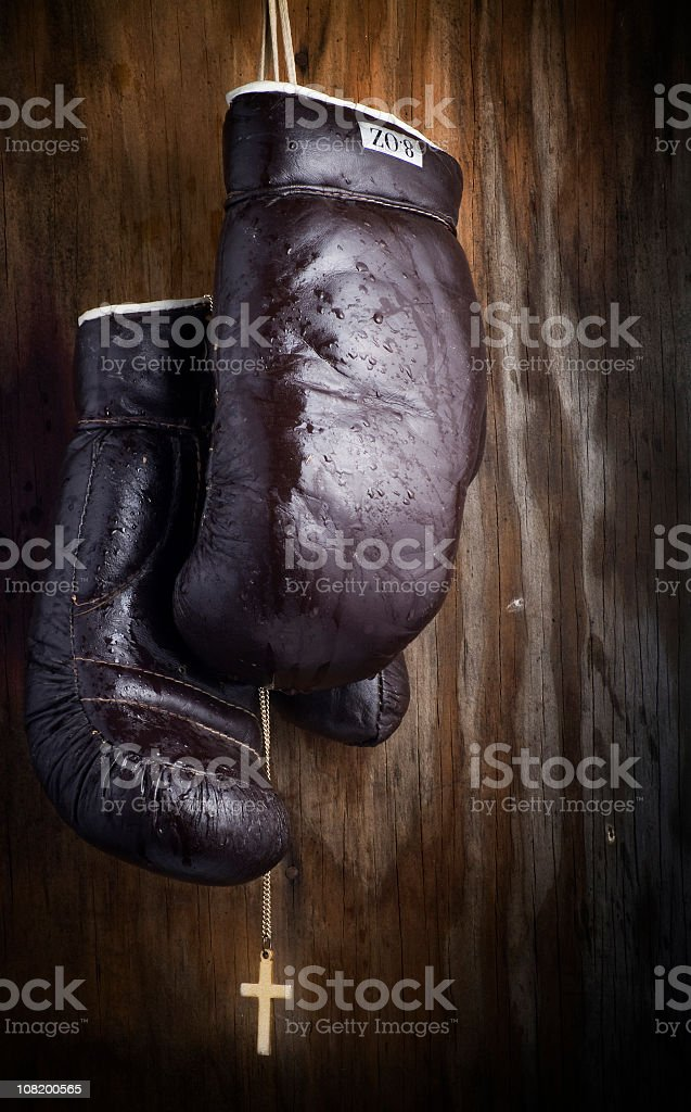 Boxing Glove Series royalty-free stock photo
