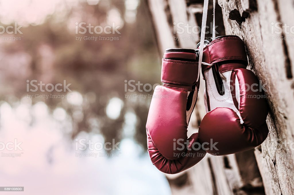 boxing gloves are suspended on a rock stock photo