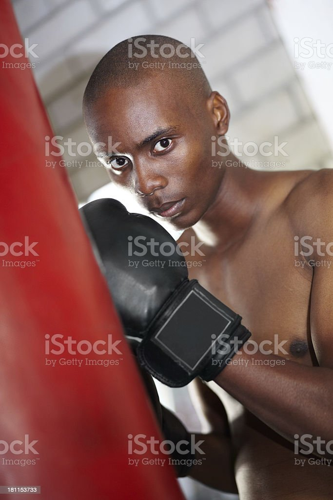 Boxing is the ultimate challenge royalty-free stock photo