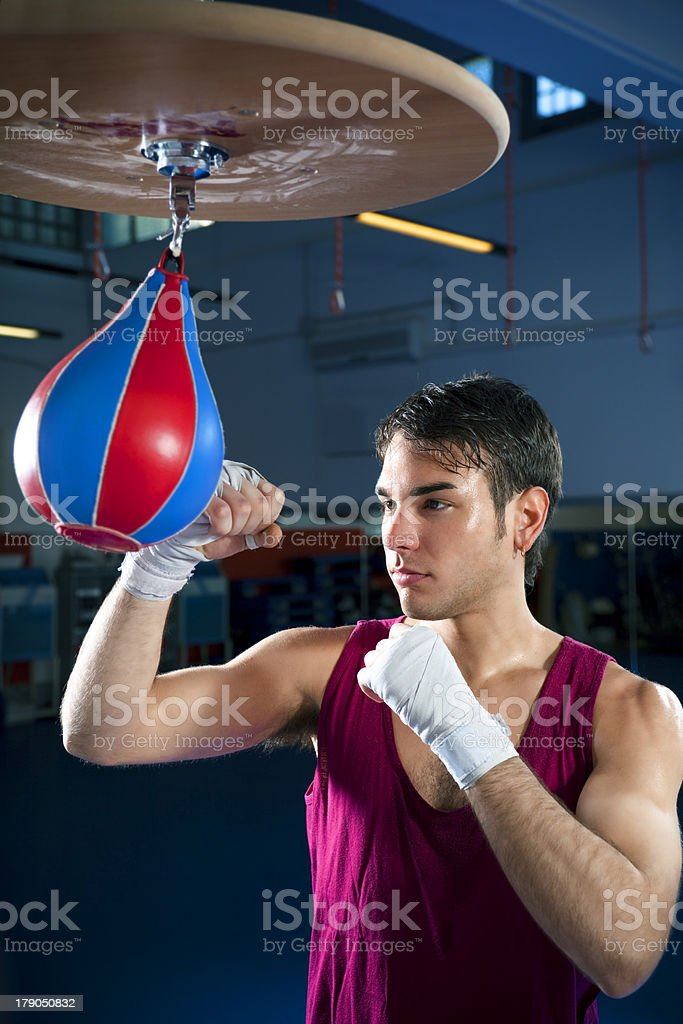 boxing stock photo