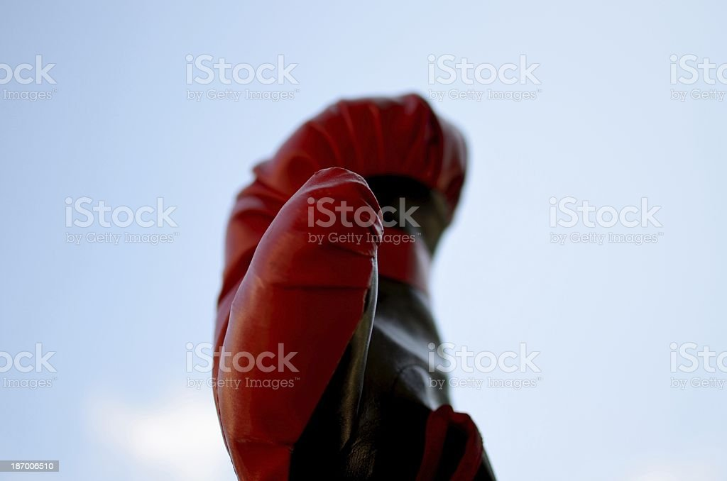 Boxe royalty-free stock photo