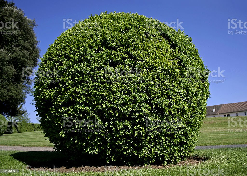 boxtree ball in france royalty-free stock photo