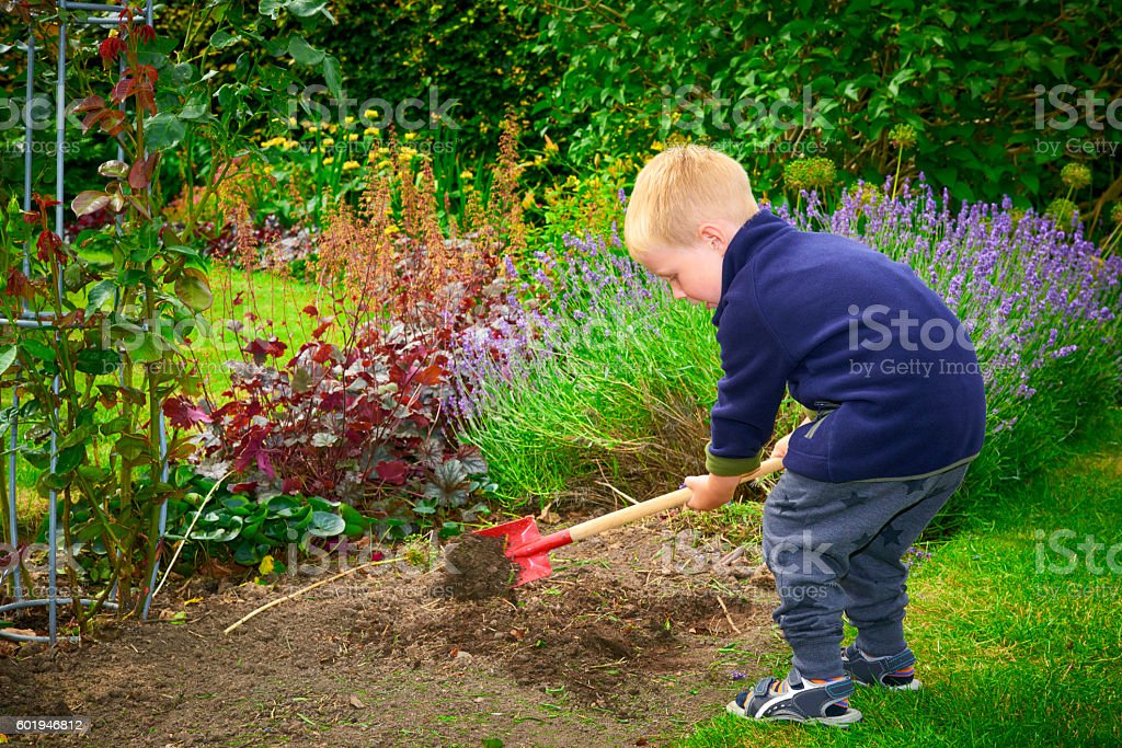 Boy 2 years old digging in the flowerbed stock photo